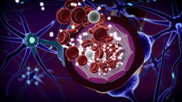 Drug crossed blood-brain barrier Animation