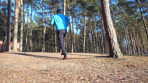 Runner in black hood jersey and black leggings running in pine forest park. Regular fit training Live Action