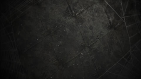 Mystical horror background with dark spiderweb and motion camera, abstract backdrop Animation