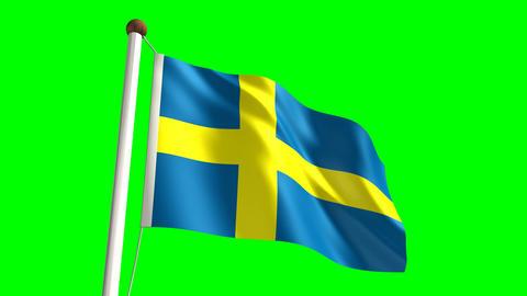 Sweden flag Stock Video Footage