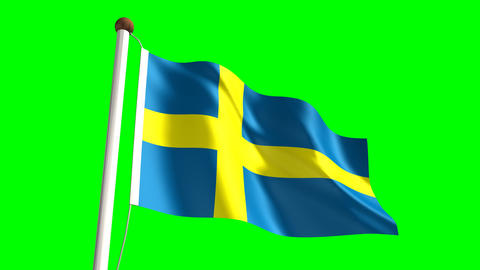Sweden flag Stock Video Footage