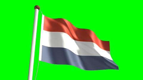Netherlands flag Stock Video Footage