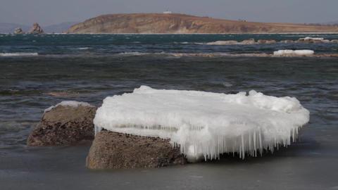 sea ice Footage