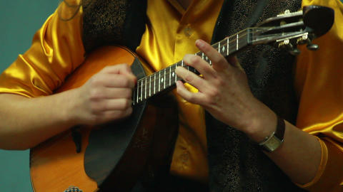 Playing the lute 1 Footage