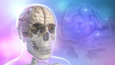 The Human Brain Stock Video Footage