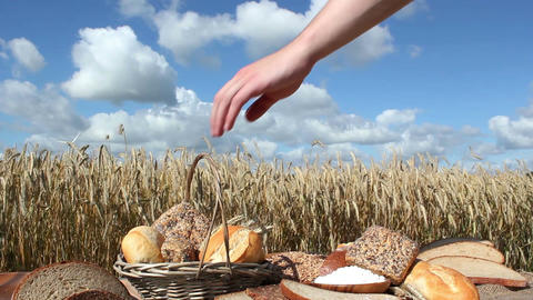 Bread and Grain Stock Video Footage