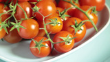 Tomatoes stock footage