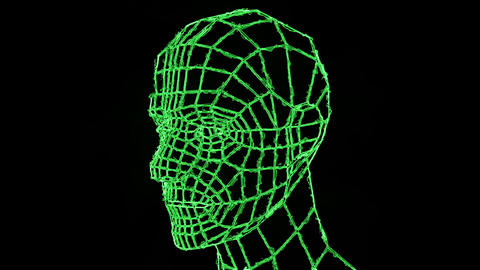 VJ Loop video. 3d grid human head. Head of the person from a 3d Grid. Human head wire 3D animation Animation