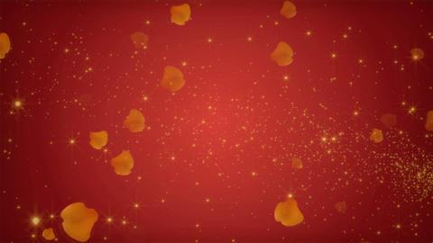 HD B 0053 Animation