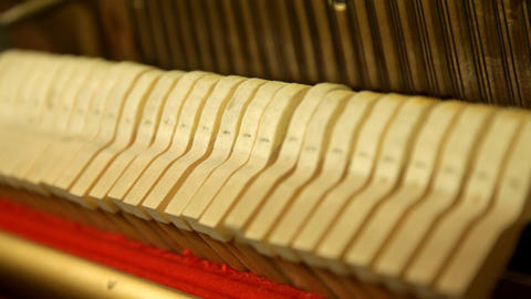 Piano stock footage