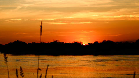 summer sunset on the river Stock Video Footage