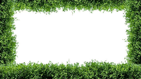 Green hedge frame Animation