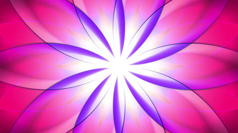 Abstract, colorful floral background Stock Video Footage