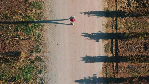 Tourist explores scenic agricultural terrain Live Action