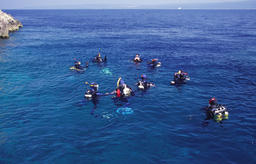group of divers on water surface ภาพถ่าย