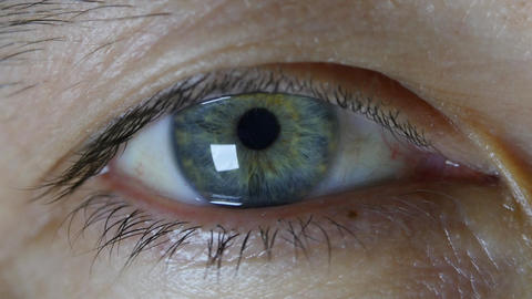 Close up of a male eye. Detail of eye of a man looking at camera Live Action