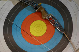 target / arrow and bow / unerring Photo