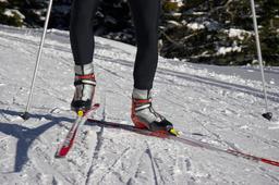 cross-country skier ภาพถ่าย