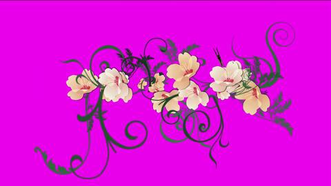 butterfly & growing flower,spring scene Stock Video Footage