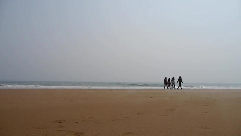 three girls walking on seaside Stock Video Footage