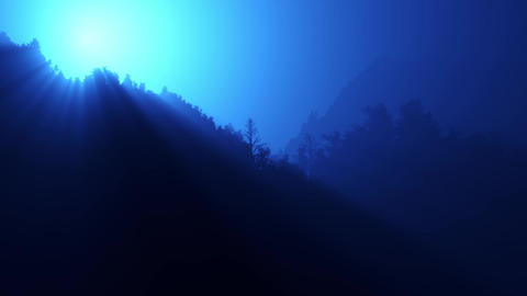 Twinkling sunlight streaks in night forest Stock Video Footage