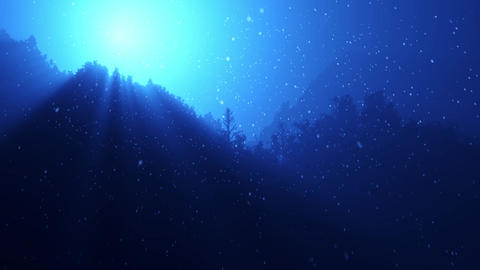 Twinkling sunlight streaks and falling snow in night forest Stock Video Footage