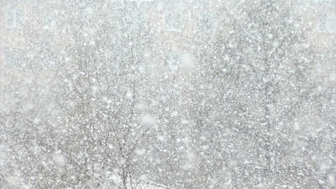 Snow, large flakes of snow create a winter background Footage