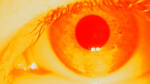 014   1920  X  1080  PAL   Eyes     Vol   I      Alex Stock Video Footage