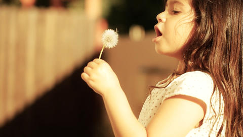 Dandelion little girl innocence Child Blowing a freedom... Stock Video Footage