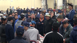 Crowded tuna auction in Tokyo, Japan Footage