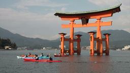 Canoes at the floating torii gate on Miyajima isla Footage