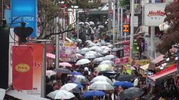 Shopping street, Harajuku, Shibuya, rain, umbrella Stock Video Footage