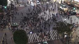 Beautiful Shibuya crossing at night Stock Video Footage