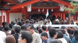 Japanese tourists enter a temple complex at Miyaji Stock Video Footage