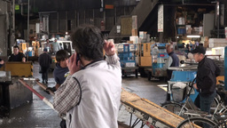 Fish trader holds a meeting over the phone at the  Footage