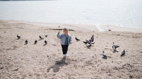 Child girl runs through a flock of doves on the beach. A two-year-old child Live Action