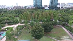 seoul park ビデオ