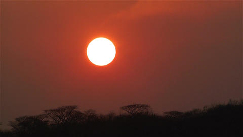 African Sunset over Jungle in Dry Season Timelapse 2 Stock Video Footage