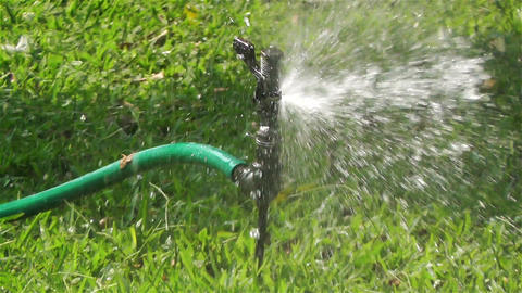 Garden Water Spray 1 Stock Video Footage