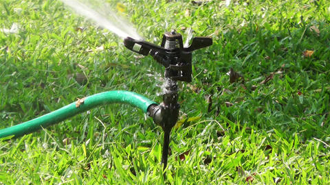 Garden Water Spray 1 stock footage