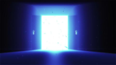 Mysterious Door v2 4 Stock Video Footage