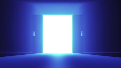 Mysterious Door v 3 4 Stock Video Footage