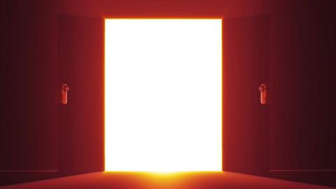 Mysterious Door v 5 2 Stock Video Footage