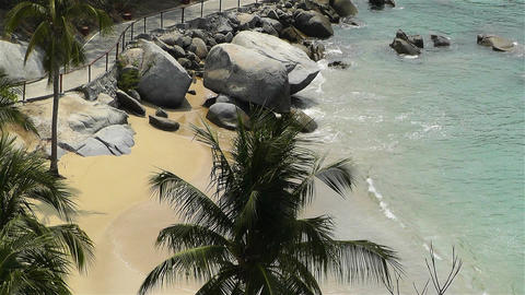 Tropical Paradise in Mexico 30 Stock Video Footage