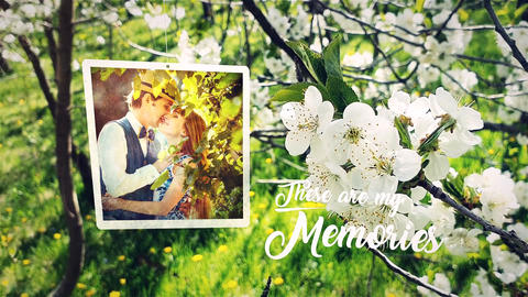 Spring Wedding Photo Slide After Effects Template