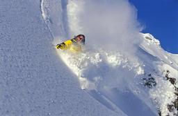 skiing 사진