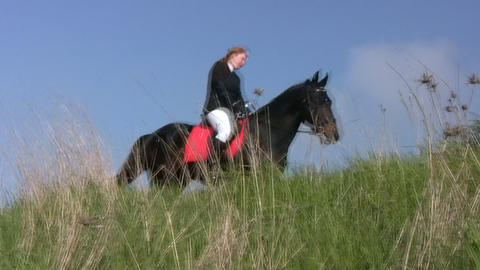 Girl Riding A Horse In The Steppe stock footage