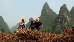 Workers are pulling a plough amidst karst scenery  Footage
