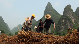 Workers are pulling a plough amidst karst scenery Stock Video Footage