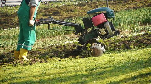 Tilling a garden with a rototiller Footage